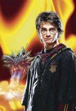 Гарри Поттер и Дары смерти Часть Первая 1