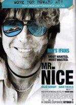 Славный малый / Mr. Nice