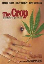 Урожай / The Crop